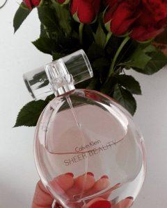 Nước hoa Calvin Klein Sheer Beauty 100ml