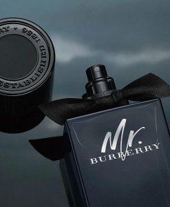 Nước hoa Mr Burberry Eau de Parfum 100ml - Nước hoa nam đẳng cấp